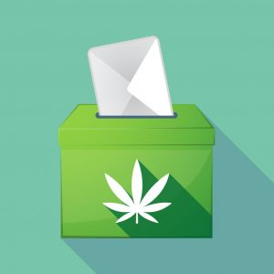 , Opinion: After the election, let's focus on fixing the arbitrary THC standard in hemp
