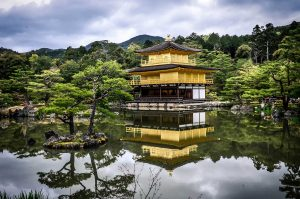 japan CBD products, International companies tap Japan's booming CBD market