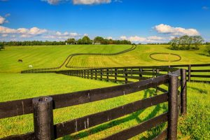 2018 Farm Bill hemp, 2018 Farm Bill: What to watch for – from 6 hemp industry insiders