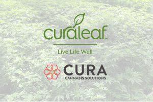 Curaleaf CBD