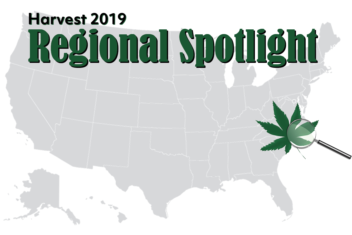 photo of Southeast harvest preview: 98% of North Carolina and Virginia farmers planted hemp for CBD production image