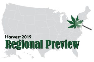 Mid-Atlantic harvest, Mid-Atlantic harvest preview: 75% of Pennsylvania CBD producers lack purchase contracts