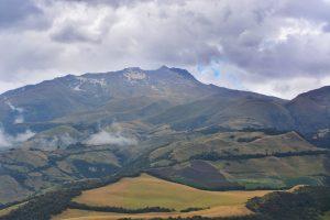 Village Farms hemp, Canadian hemp producer braces for Latin American competition
