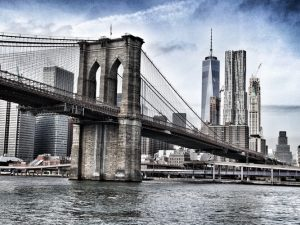 New York hemp, Activists resolve to fine-tune stalled NY hemp and CBD bill