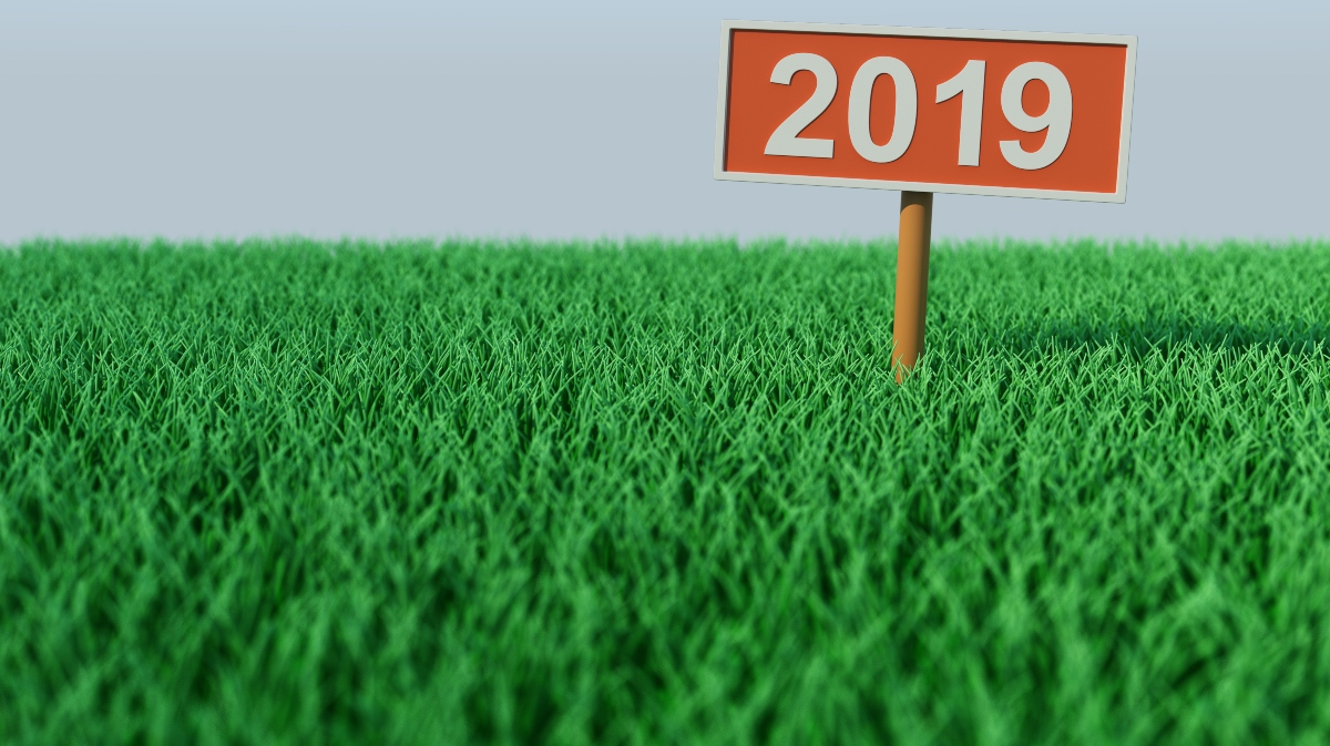 photo of Top 10 hemp business stories of 2019: Legalization brings new rules, Texas joins industry, farmers struggle with harvest… image