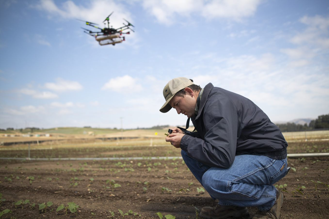 photo of Drones top of mind for hemp producers considering artificial intelligence image