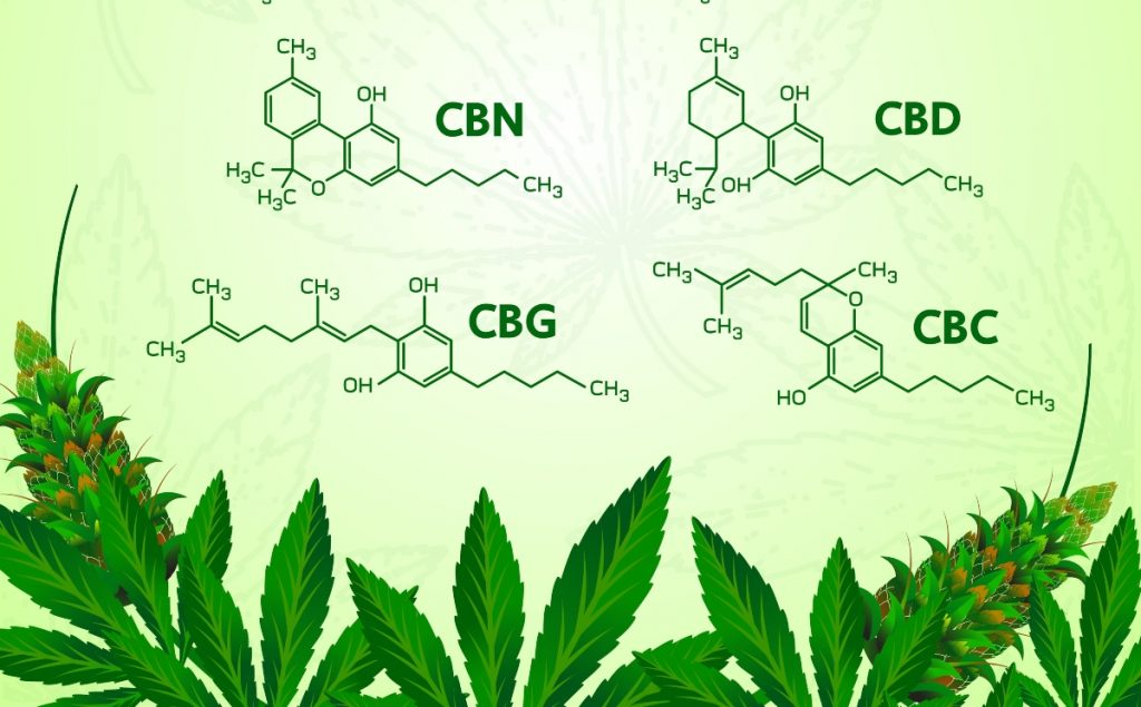 Minor cannabinoids offer higher prices and less federal oversight, but risks abound