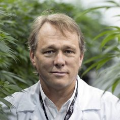 Collective Growth Corp., Marijuana giants have a new plan to jump-start US hemp's supply chain