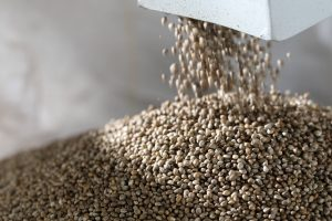 hemp food challenges, Hemp food producers overcome challenges on sourcing local ingredients, winning grocery shelf space