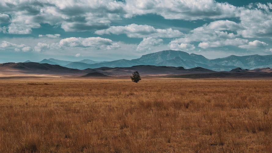 photo of Montana lawmakers mull plan to separate hemp, marijuana production image
