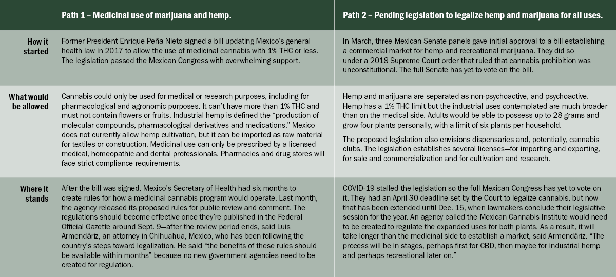 Mexico cannabis and hemp legalization, Chart: Making sense of Mexico's dual legalization measures