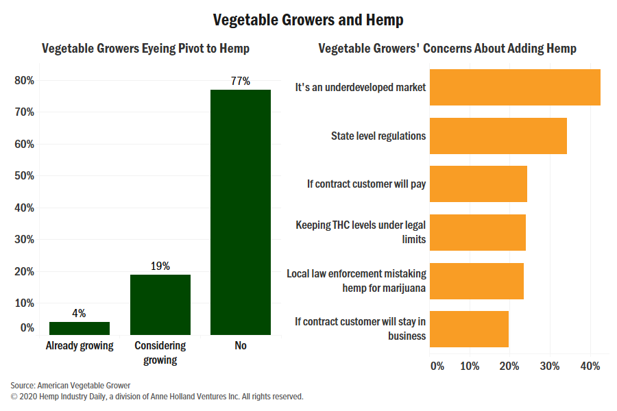 , Chart: Majority of US vegetable growers steering clear of hemp production for now