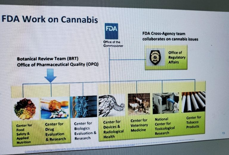 FDA cannabinoids gender, FDA details challenges, research gaps in regulating cannabis-derived products