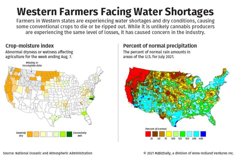hemp water, Hemp growers confront water challenges on top of oversupply