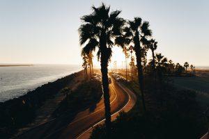California CBD, California CBD compromise thrills some but has farmers mulling a lawsuit